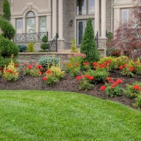 front yard with beautiful red flowers